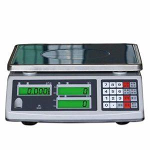 30kg / 0,1g Numérique Échelle électronique, Haute précision Échelle comptage Affichage LCD Nourriture multifonction Boutique poids informatique Banc marché échelle prix à l'échelle industrielle