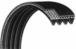 Courroie Striée 614PJ5 dents élastique pour bétonnière