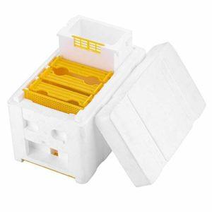 Outils apicoles Ruches en mousse Boîtes à queue d'abeille Boîtes d'élevage d'abeilles Coffrets de pollinisation – Blanc et jaune